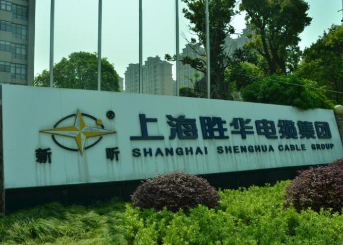 Shanghai Shenghua Cable (Group) Co., Ltd. fabriek productielijn 2